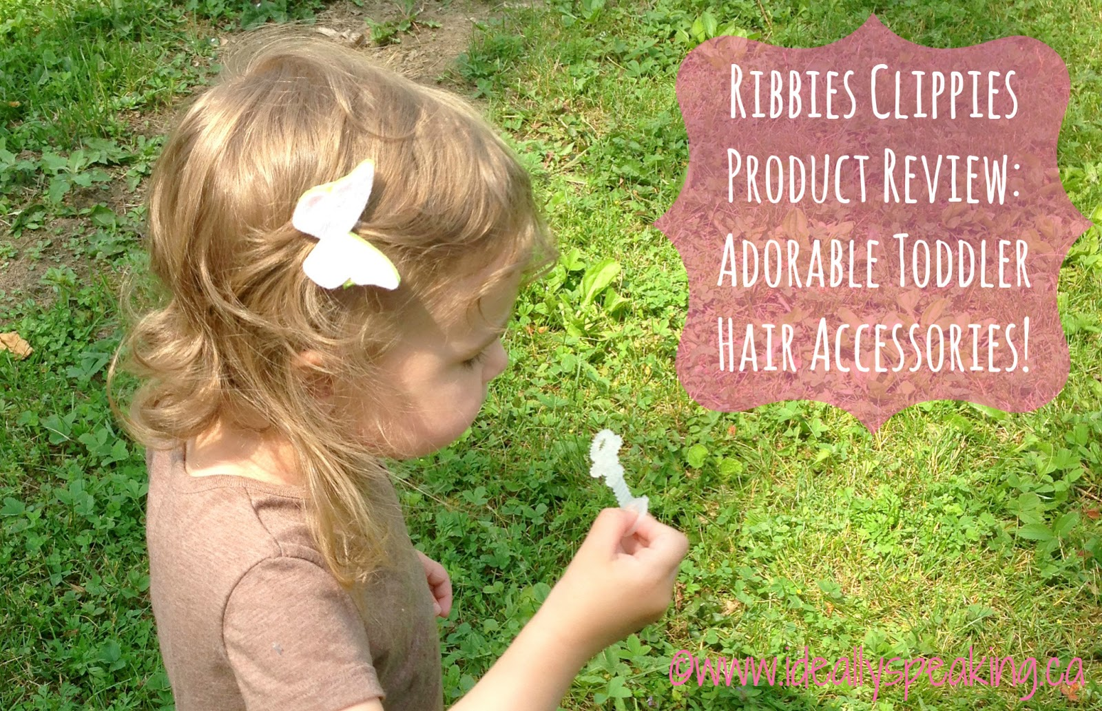 Ribbies Clippies Review - Adorable toddler hair accessories.