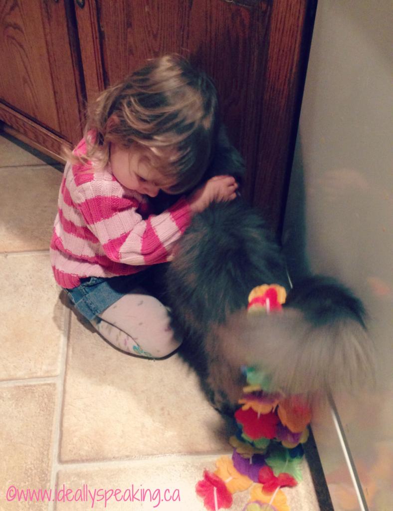 Toddler-Cuddling-Cat