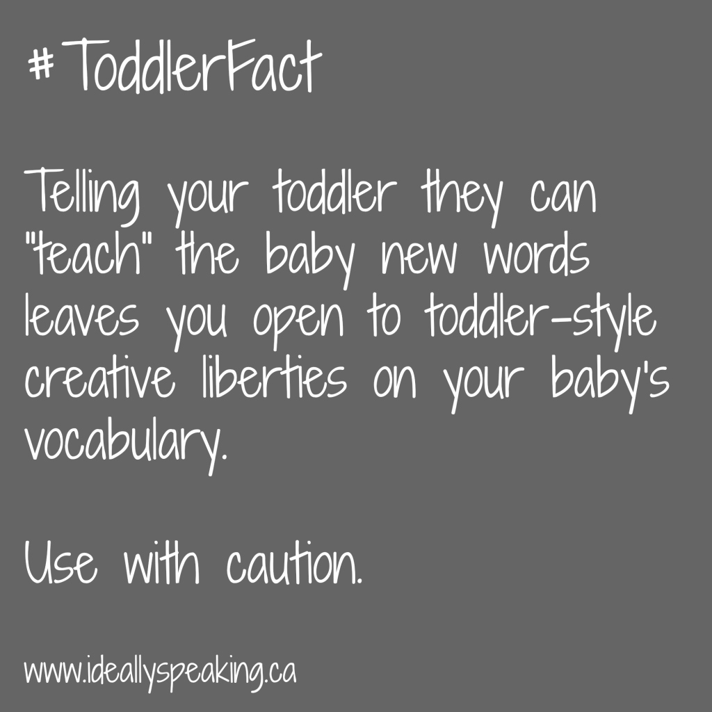 Letting your toddler teach your baby can be dangeroous. And hilarious.