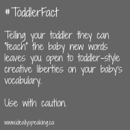 Talking With My Toddler #21: Teaching the baby new words