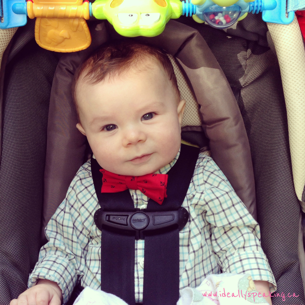 That bow tie. It's not right to be this cute.