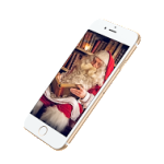 PNP2015_9_Mobile App